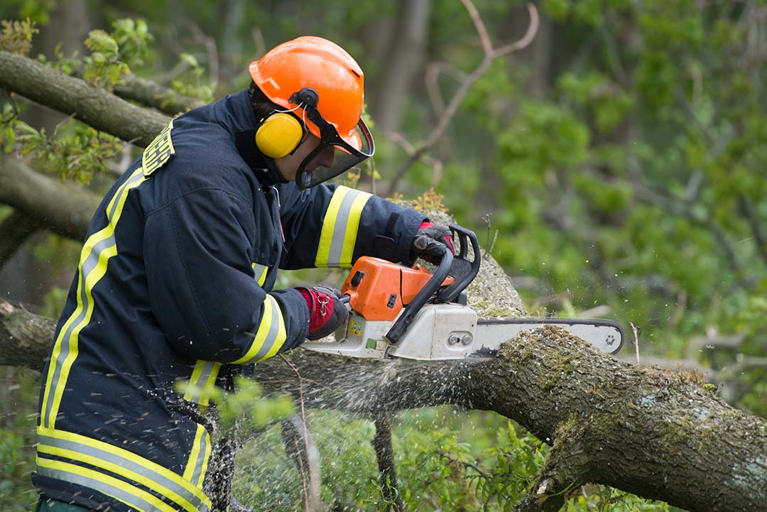 Chainsaw operation PPE